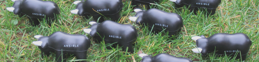 Ansible Benelux's cover image